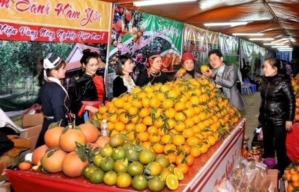 Hội chợ cam sành Hàm Yên