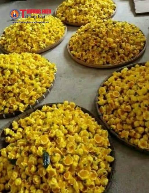Chè hoa vàng được đóng gói, bán ra thị trường từ 1,5-3 triệu đồngkg