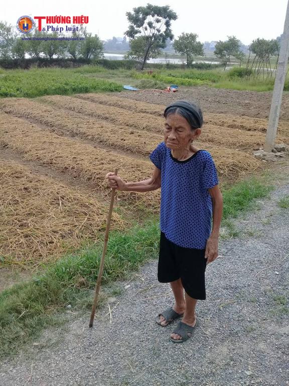 Cụ Nguyễn Thị Nhượng bước sang tuổi 94 lưng đã còng rạp và mắc nhiều chứng bệnh tuổi già.