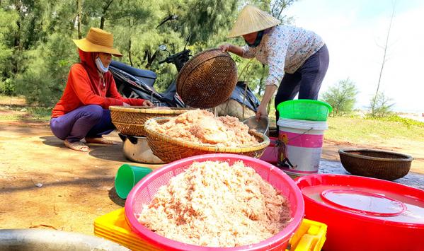ngư dân Quảng Trị