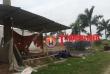 Dự án khu nhà ở Hoàng Vân: Sau 10 năm vẫn là 'túp lều lý tưởng' (kỳ 1)