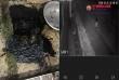 Gia đình phóng viên Tạp chí điện tử Thương hiệu và Pháp luật bị 'khủng bố' bằng chất bẩn