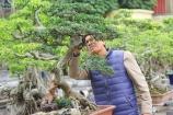 Chiêm ngưỡng vườn cây độc đáo của một nghệ nhân tuổi lục tuần