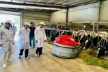 """""""Resort"""" bò sữa Tây Ninh sẽ là hạt nhân để xây dựng vùng chăn nuôi bò sữa an toàn"""