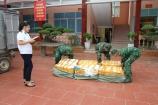 Lạng Sơn: Bắt giữ gần nửa tấn nầm lợn không rõ nguồn gốc xuất xứ
