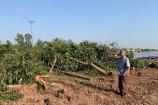 Viết tiếp bài huyện Mê Linh (Hà Nội): Quanh việc cưỡng chế trang trại của ông Nguyễn Văn Tuyến