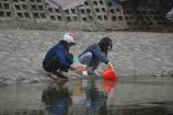 Ngày lễ ông Công ông Táo: Túi nilon chất đống ven hồ ở Hà Nội