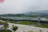 Thái Nguyên: Người dân phát ốm vì trại lợn 'bức tử' đời sống hàng ngày