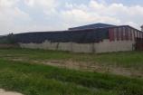 """Bắc Giang: Doanh nghiệp """"hô biến"""" đất nông nghiệp thành nhà xưởng, chính quyền """"làm ngơ""""?"""