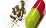 Bắt giữ 120.000 viên thuốc con nhộng không rõ nguồn gốc