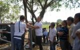 Nông dân Việt Nam và Hà Lan giao lưu, tập huấn kỹ thuật chăn nuôi bò sữa