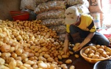 Hà Nội sẽ có thêm 6 chợ đầu mối nông sản