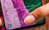 Samsung phát hành bản vá lỗi vân tay cho Note 10, S10