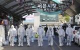 Bộ Y tế hướng dẫn cách ly người đến hoặc đi qua Hàn Quốc