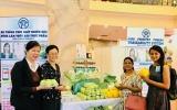 VHA COOPS ra đời - Chặng đường phát triển mới của Giải pháp hữu cơ vi sinh và sản xuất nông nghiệp bền vững