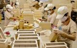 Xuất khẩu gỗ tăng 2,4% so với cùng kỳ năm 2019