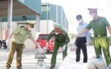 Thanh Hóa: Bắt xe tải chở hơn nửa tấn thực phẩm bẩn