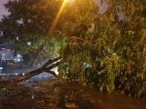 Tổng Cục đường bộ ra Công điện khẩn về ứng phó bão số 3