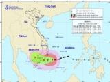Bộ GD-ĐT có công điện 'hỏa tốc' về ứng phó với bão Usagi