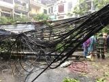 Hình ảnh phố ngập, cây đổ do ảnh hưởng của bão số 3 tại Hà Nội