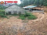 Hương Khê- Hà Tĩnh: Gia trại nuôi lợn gây ô nhiễm môi trường