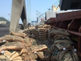 Thanh Hóa: Bắt giữ 41 tấn gạo không có nguồn gốc xuất xứ
