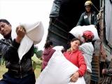 Thủ tướng Chính phủ giao Bộ Tài chính xuất cấp không thu tiền 480 tấn gạo cho tỉnh Quảng Trị