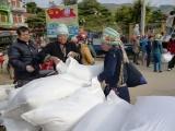 Xuất gạo dự trữ quốc gia cho 2 tỉnh trong dịp Tết Nguyên đán Canh Tý
