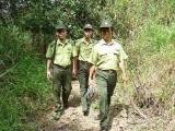 Đồng Nai: Trạm trưởng kiểm lâm bị thợ săn đâm trọng thương
