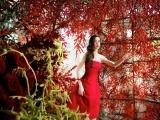 Hồ Ngọc Hà lộng lẫy giữa ngàn hoa trong bộ ảnh mới