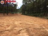 """Trưởng phòng Hành chính HĐND tỉnh Hà Tĩnh """"phá rừng"""" làm khu sinh thái không phép?"""