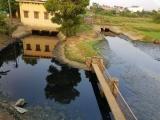 Hà Nội: Mương nước thải bốc mùi hôi thối ngay cạnh nhà máy nước sạch KĐT Tân Tây Đô
