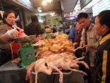 TP. HCM: Siết chặt hoạt động giết mổ, hạn chế thịt nhiễm E.coli