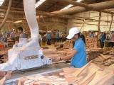 Xuất khẩu gỗ sang thị trường EU có thể đạt 1 tỷ USD vào năm 2020