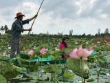 Đồng bằng sông Cửu Long: Doanh thu từ du lịch đạt gần 11.315 tỷ đồng