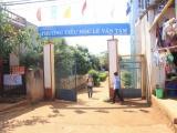 Gia Lai: Nữ kế toán trường tiểu học lãnh án 8 năm tù giam