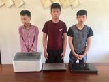 Hà Tĩnh: Tạm giữ 3 nghi phạm chuyên trộm cắp tài sản