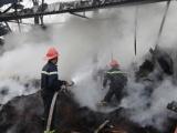 Thái Nguyên: Cháy cơ sở sản xuất, gần 100 tấn chè khô bị thiêu rụi