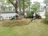 Tới FLC Sầm Sơn chiêm ngưỡng vườn chim nhiệt đới bên bờ biển
