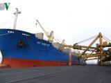 """Rót 40.000 tấn than """"xông cảng"""" xuân Kỷ Hợi"""