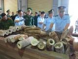 Bắt giữ 9,1 tấn hàng nghi ngà voi ở cảng Tiên Sa