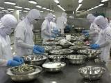 Mỹ áp thuế chống bán phá giá 0% với tôm Việt Nam