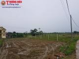 Xã Đồng Liên – TP. Thái Nguyên: Dự án trồng hoa... lại trồng lúa, ngô khiến người dân bức xúc
