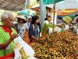 Khánh Hòa: Tổ chức lễ hội trái cây huyện Khánh Sơn lần thứ I năm 2019