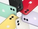 iPhone 11 sẽ ổn định giá sau khi gây 'sốt'