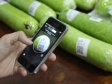 Hà Nội: Cấp mã tài khoản quản trị cho 2.506 DN trong lĩnh vực nông nghiệp