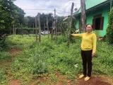 Gia Lai: Mượn đất canh tác rồi chiếm luôn đất (Bài 1)