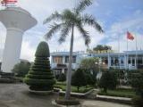 Ninh Thuận: Lợi dụng thoái vốn Nhà nước để bán rẻ cổ phần cho doanh nghiệp