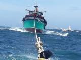 Cứu 8 ngư dân Bình Định gặp nạn trên biển