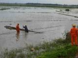 Ảnh hưởng bão số 5, gần 900.000 hộ dân miền Trung mất điện
